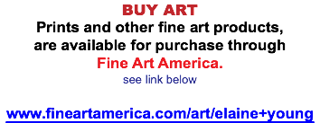 BUY ART Prints and other fine art products, are available for purchase through Fine Art America. see link below www.fineartamerica.com/art/elaine+young